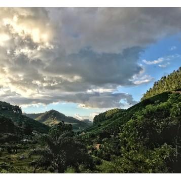 Mountain Caparao