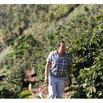 Guatemala - Finca Las Terrazas